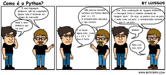 Pyctoria: 3 - Como é o Python?